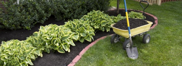 Edging and Mulching Services by Whole 9 Yards Based in Flemington, NJ